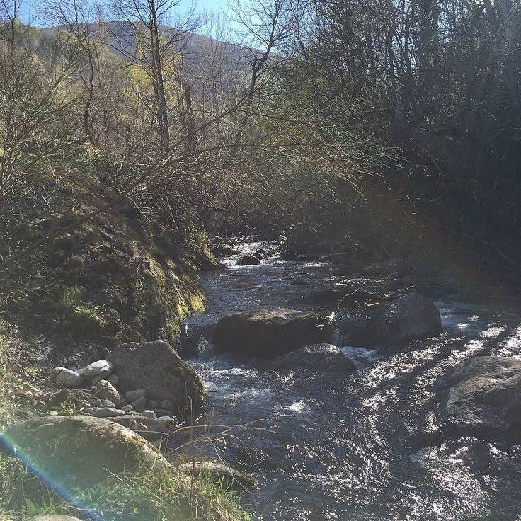 Mountain stream near the Dhamma Vihara retreat centre in the Pyrenees. #mountainstream #meditationretreat #retreatcentre #dhamma #burgs #awakening #liberation #enlightenment #freedom