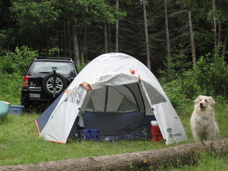 Campeggio, aspettative vs realtà. Come non potersi preparare a tutto