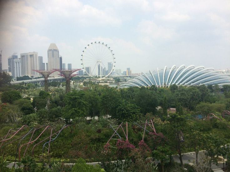 View of Singapore from the Gardens by the Bay