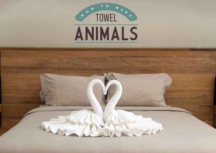 How to make towel animals, including swans