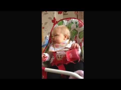 Baby Nearly Eats Live Budgie !! | Viral Cloud