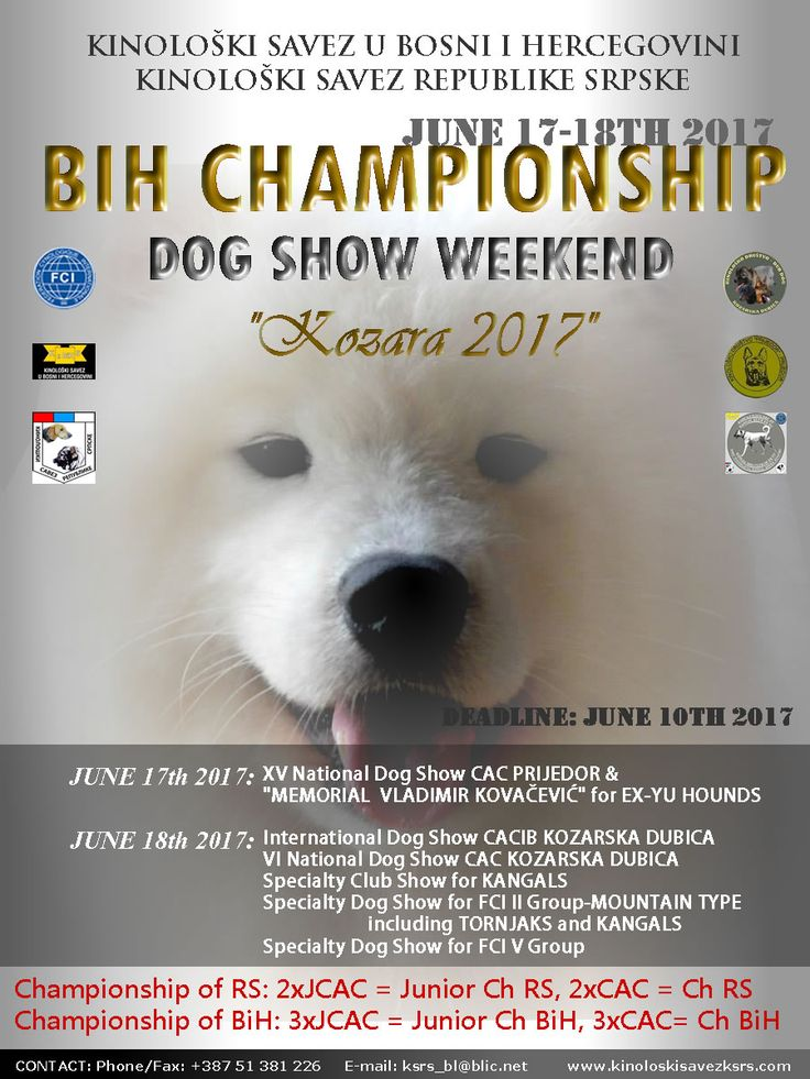 "BIH CHAMPIONSHIP-Dog Show Weekend ""Kozara 2017""-June 17/18th 2017"