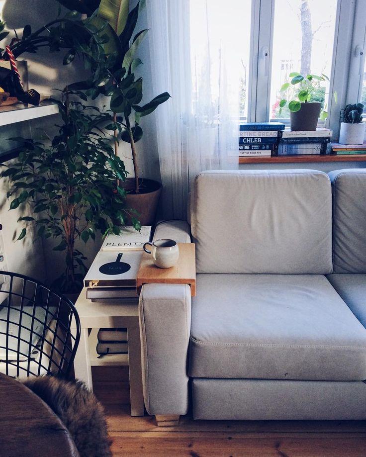 My personal urban jungle🌿  #newplace #mieszkanie #apartment #urbanjungle #rośliny #plant #plants #książki #book #books #cookbook #cookbooks #sofa #urbanjungleblog #ficus #pilea #interior #interiors #vscointerior #myflat #flat #myplace #home #myhome #homeinspo #housedecor #decor #design #furniture #meble