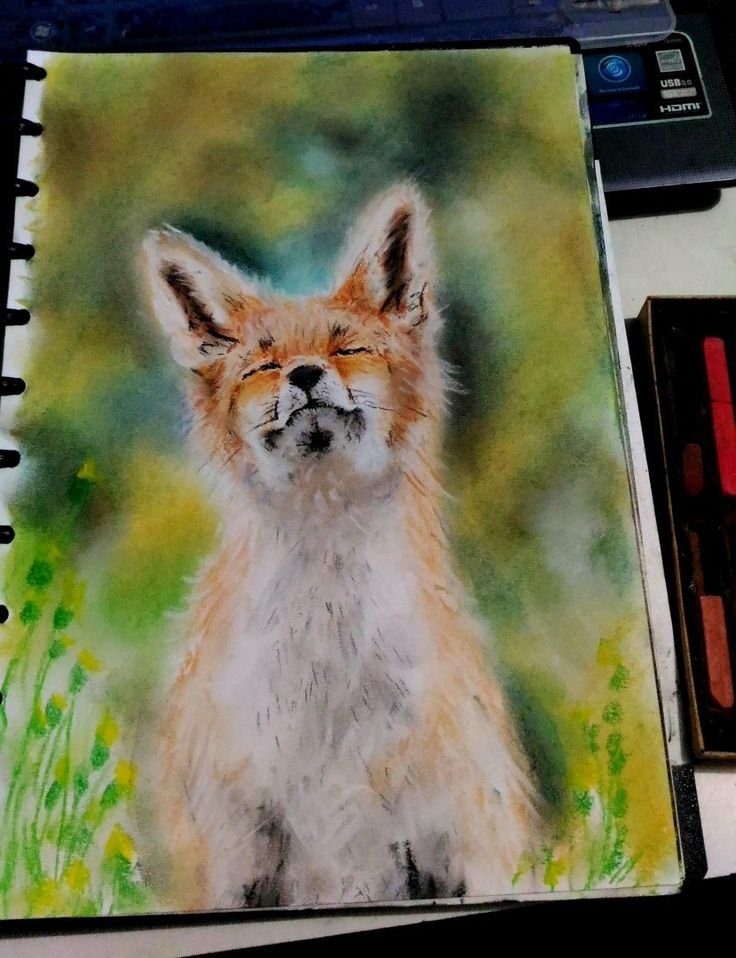 Our Art Corner - fox (drawing by DArtYap)