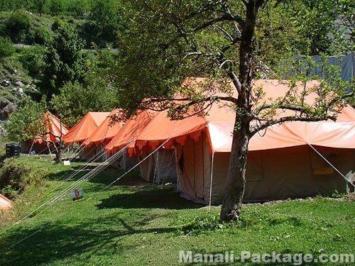 Enjoy Camping in Manali