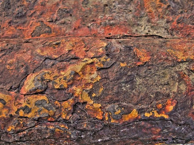 rusted metal detail