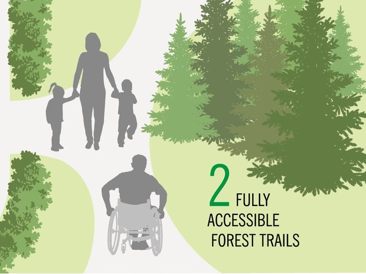Whoever said hiking wasn't an accessible activity has obviously never been to the York Regional Forest. Check out our two new accessible trails and enjoy the outdoors! #YRForest