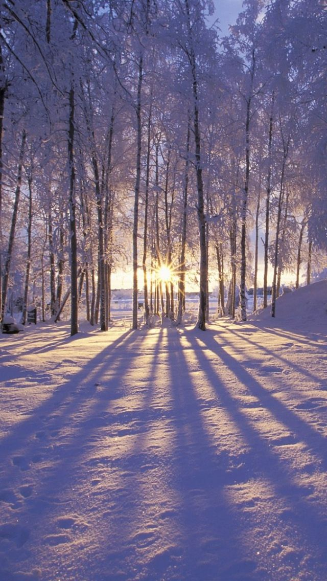 Winter iPhone Wallpaper 24