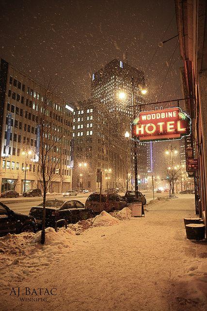 Winter in Winnipeg MB, beautiful but cold