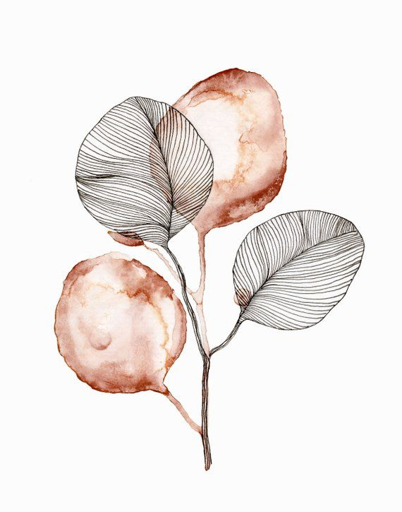 Eucalyptus watercolor line drawing print – ~♥~○~♥~        Christine ~♥~○~♥~