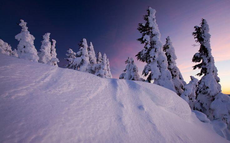 Snowy Mountains 4552