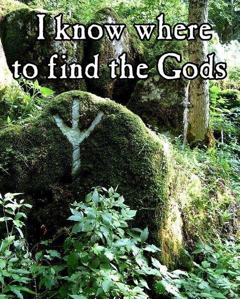 The Gods are all around us, in every leaf, in every blade of grass and in every living creature, we see and feel their spirit.