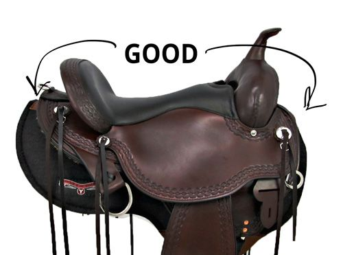 hourse back riding english or western The western saddle is made to distribute weight more evenly over the horse's  back so horse and rider can counterbalance the weight of a roped cow the seat .