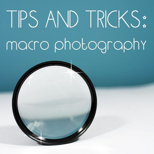 KNOW AND TELL CRAFTS: Macro Photography...