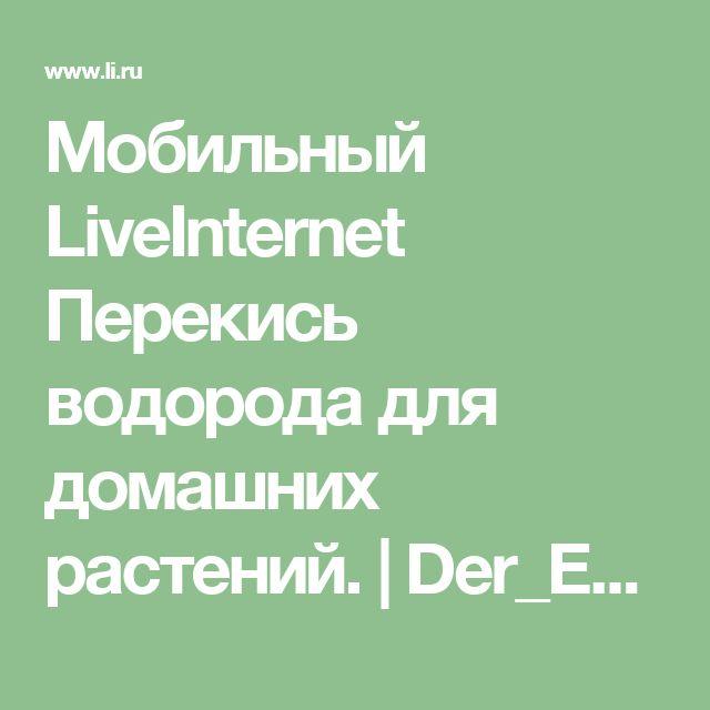 Мобильный LiveInternet Перекись водорода для домашних растений. | Der_Engel678 - Дневник Der_Engel678 |