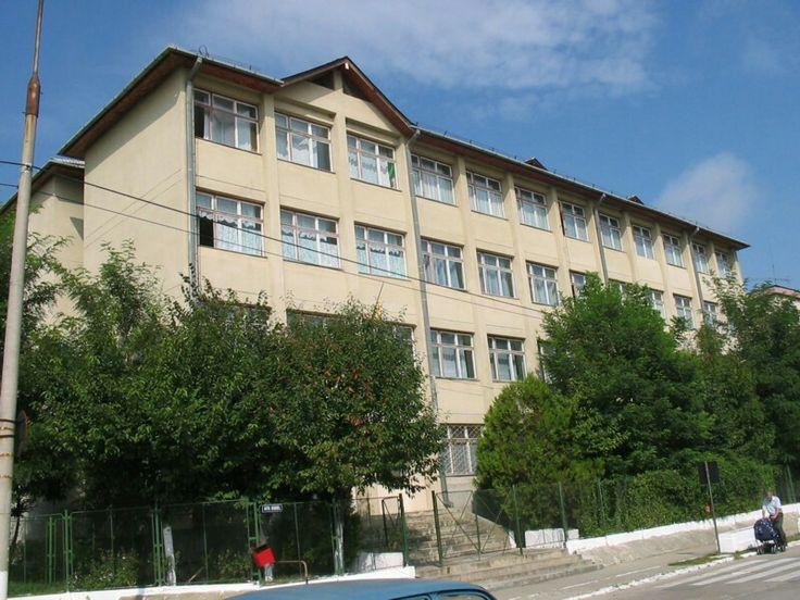 Valea Aurie School