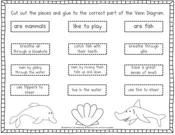 Care For A Goldfish Plant Step Version in addition What Is That Animal as well Fairy Coloring Pages further Kids Goal Sheet Interesting Worksheets For Silver Dolphin Books Setting Worksheet And Reading List Rev likewise Paper Plate Koala Craft. on dolphin worksheets kindergarten