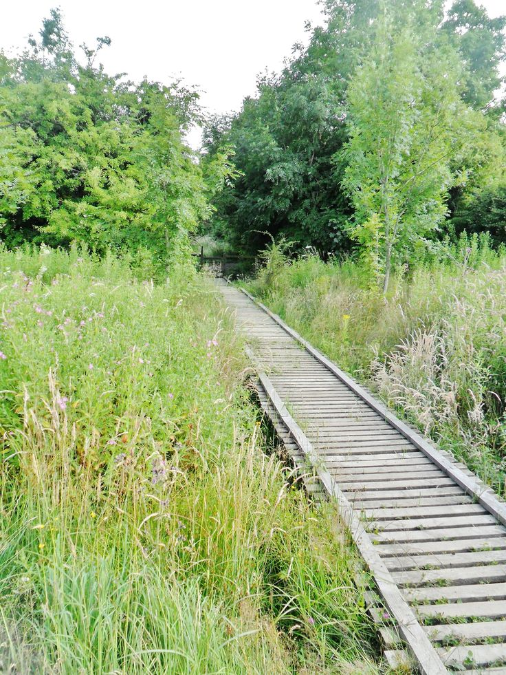 1000 ideas about wooden walkways on pinterest wooden for Wooden walkway plans