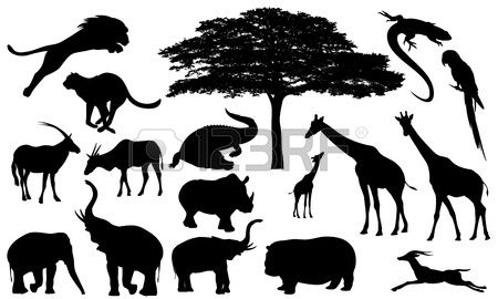 Afrikaanse wilde dieren fijne vector silhouetten zwart en wit fauna en flora gedetailleerde contoure Stockfoto