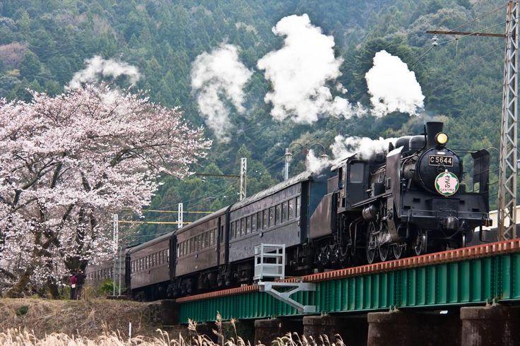 大井川鉄道(静岡)