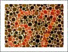 Contorno: Esta imagen forma parte de la prueba estandarizada para el daltonismo. La percepción de contorno nos hace distinguir o separar la figura del fondo, en este caso esta marcado por un cambio de color.