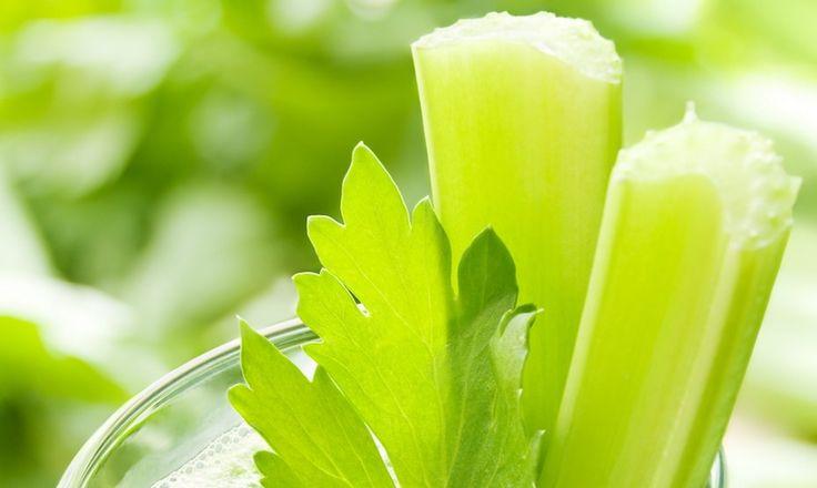 Сельдерей: овощ для похудения