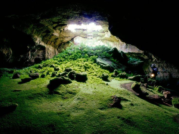 Lava Tube Cave / Tulelake, California: Gardens Beds, Beds National, Lava Beds, National Monuments, Wonder Places, Underground Gardens, Tube Caves, Lava Tube, Crater Lakes