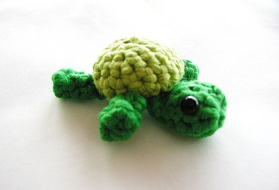 Tiny Turtle.