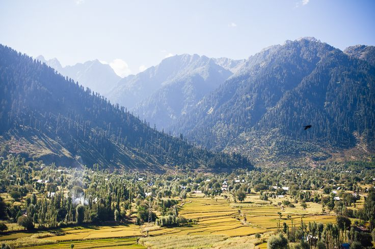 KASHMIR & LADAKH - Deep green valleys and high barren plateaus paint a contrasting landscape of this mountainous land, which formed a major caravan trade route in ancient times and whose influence is still apparent today in its distinct cultural heritage, different from any other region of the Indian sub-continent