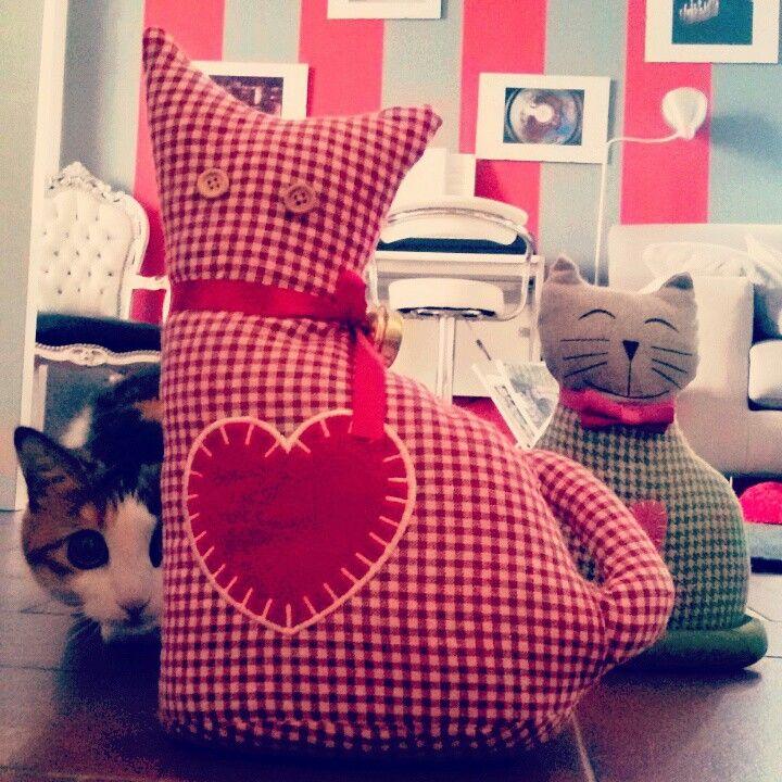 Cats Vs Cat