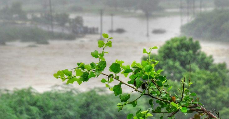 #Jalore #Rajsthan #Flood #Time #Qayyum #Click 👆😜