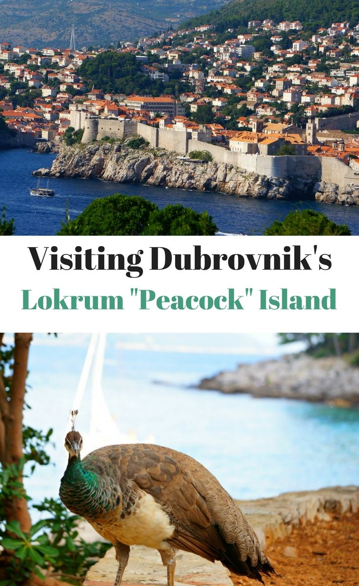 Lokrum Island - also known as Peacock Island or Lacroma Island is a perfect day trip from Dubrovnik Croatia. Game of Thrones fans won't be disappointed! Click to find out more.