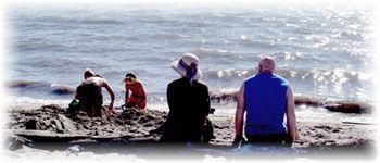 Jetty Island - Open for Summer - Activities Calendar - ParentMap