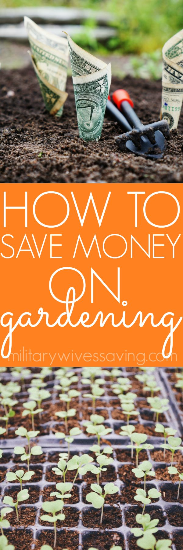 Great tips for how to save money on starting a garden (and should you do an indoor garden?) Add this to your DIY gardening boards!