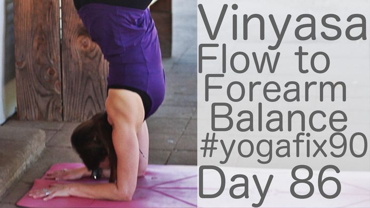 Vinyasa Flow to Forearm Balance Day 86 Yoga Fix 90 with Lesley Fightmaster