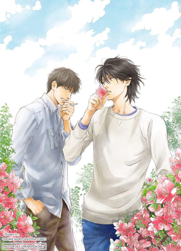 花は咲くか Hidaka Shoko