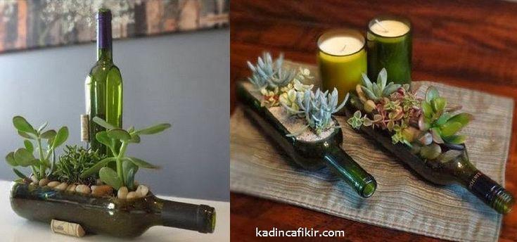 Cam şişe yatay kesme ile cam saksı bitki yetiştirme, cam şişe saksıda süs bitkisi modeli | Kadınca Fikir