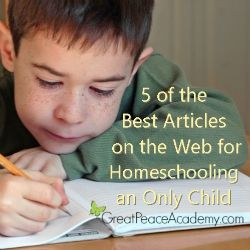 5 Best Articles for Homeschooling an Only Child