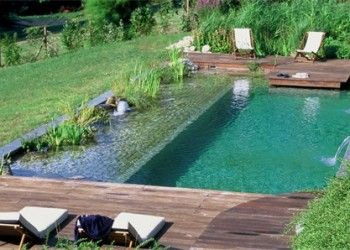 533 best natural pool schwimmteich images on pinterest for Piscine ecologique