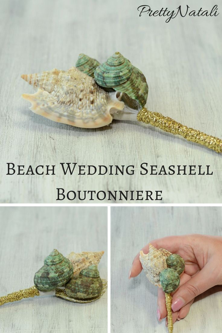 Beautiful seashell boutonniere with real sea shells. Great addition to your beach wedding , accessory for groom, groomsmens, nautical wedding, destination wedding. Seashell boutonniere,  Beach boutonniere,  Shell boutonniere,  Nautical boutonniere,  Mens boutonniere,  Tropical boutonniere,  Seashore wedding, Groom boutonniere, Accessory for Groom , Groomsmen Accessory,  Hawaiian grooms pin,  Destination wedding #Shellboutonniere #Beachboutonniere #beachwedding #seashellboutonniere