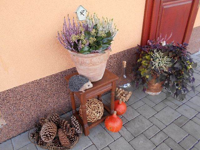 podzim na terase...