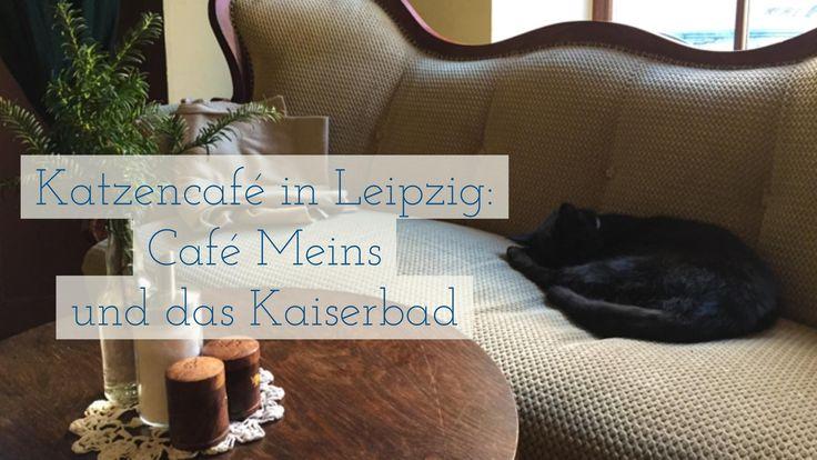 https://www.youtube.com/watch?v=GLUARm0Cktw In Leipzig gibt es kein offizielles Katzencafé. Wohl aber solche Lokale, Restaurants und Cafés in denen Katzen leben. Alle Details zum Video hier: http://www.reiseaufnahmen.de/deutschland/katzencafe-in-leipzig