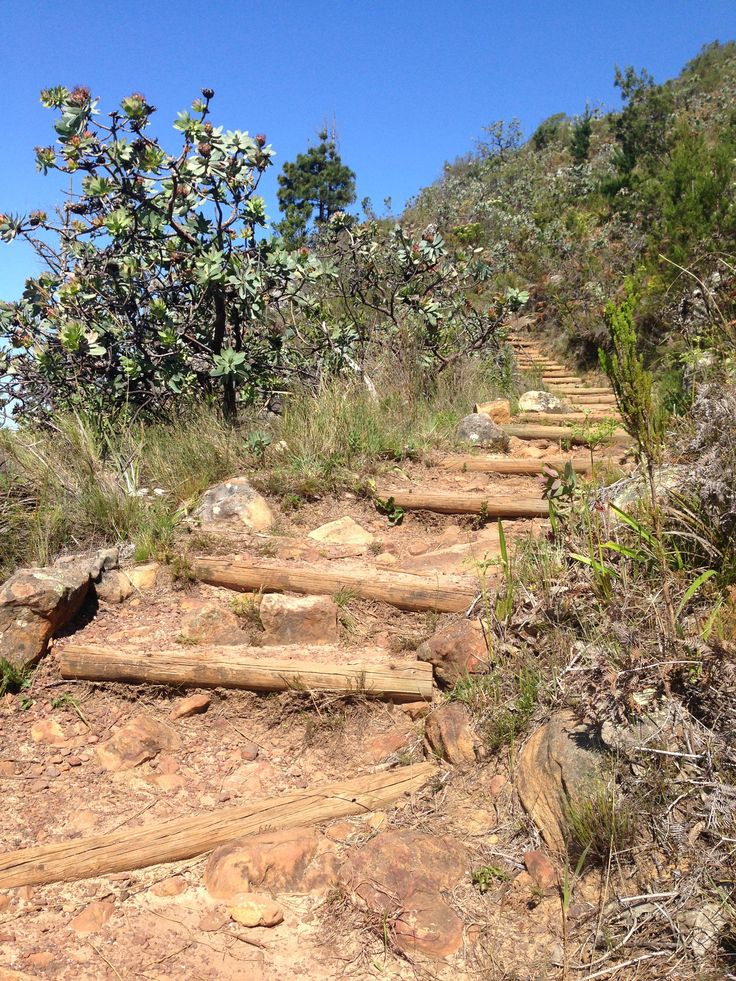 Cecilia Falls via Rooikat Ravine 17km into Table Mountain Challenge separates the men from the boys.