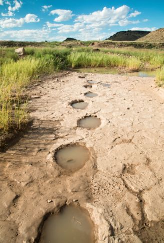 Dinosaur Tracks | TravelOK.com - Oklahoma's Official Travel & Tourism Site