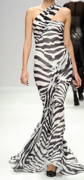 255 Best All Things Zebra Images On Pinterest Zebra