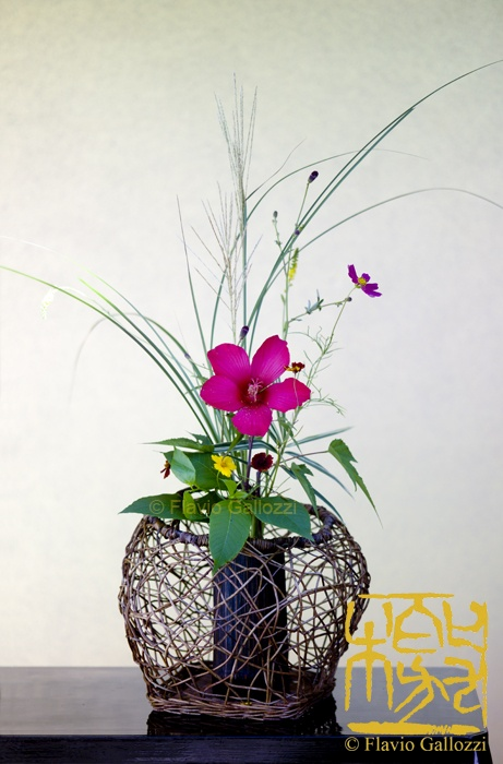 Best japanese flower arrangement images on pinterest
