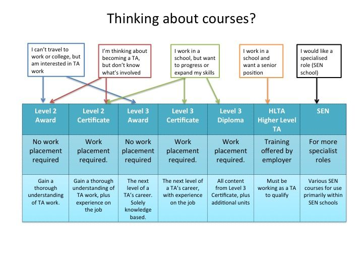 Thinking about doing a Teaching Assistant course? Get some advice and tips by checking out this chart.