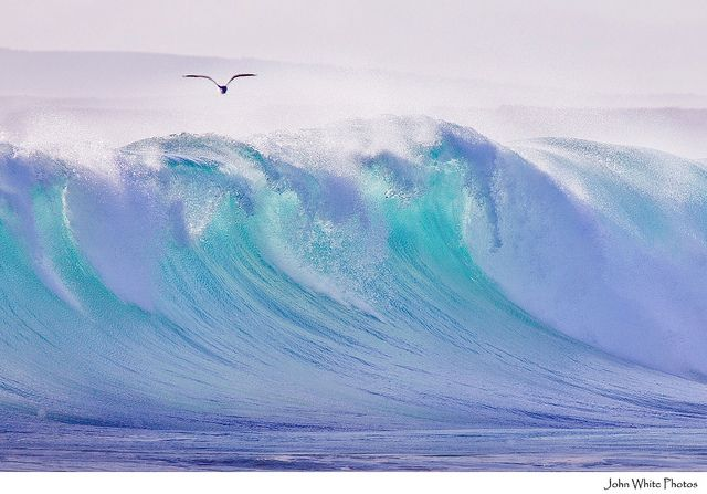 Water, water, water: Water, South Australia, Color, The Ocean, Photography Art, In My Dream, Big Waves, The Waves, Green Beaches