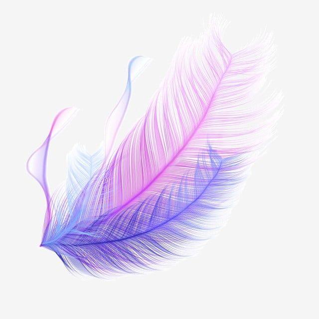 Color De Pluma Realista Gradiente Flotante Hebilla Libre Clipart De Plumas Pluma Que Cae Png Y Psd Para Descargar Gratis Pngtree Colorful Feathers Feather Background Light Blue Aesthetic