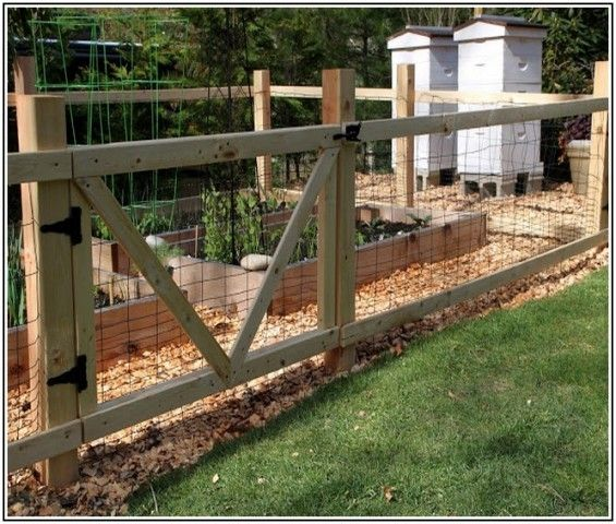 Astounding Garden Zone Fence Gate